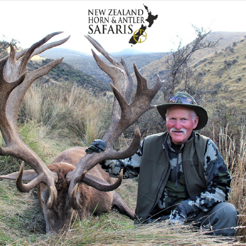 New Zealand Red Stag 441 to 480sci