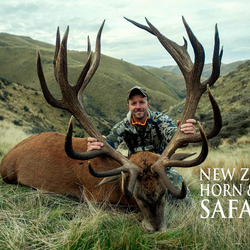 Club New Zealand Red Stag 380 sci