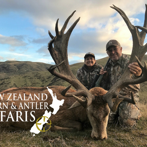 Club New Zealand Red Stag 375 sci