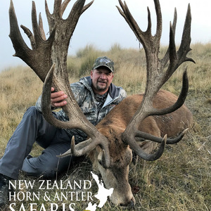 2017 Club New Zealand Red Stag 370 to 440sci