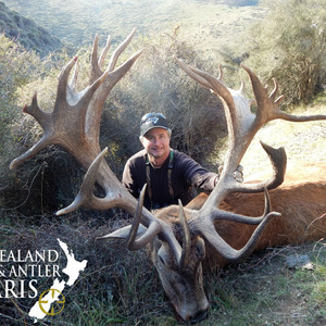 2016 Club New Zealand Red Stag 370 to 440sci