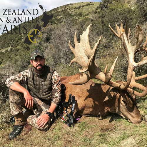 Early Season Club NZ Red Stag 463sci