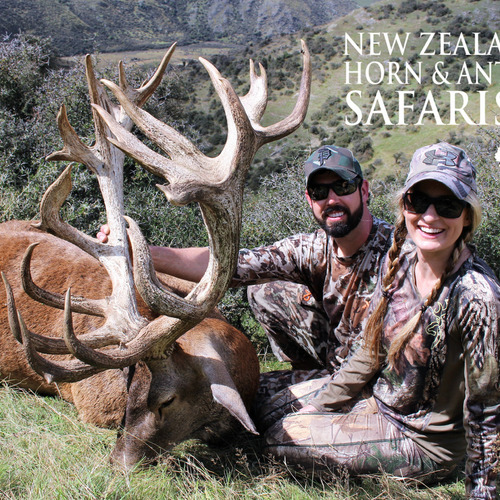 2018 New Zealand Red Stag 320 to 370sci