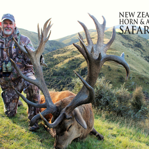 Early Season Club NZ Red Stag 450sci