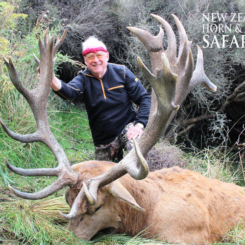 Early Season Club NZ Red Stag 429sci