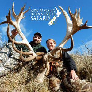 2019 Club New Zealand Red Stag 380 to 440sci