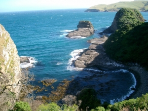 Catlins coast line